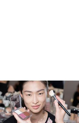 Dior Backstage Blush Brush №16