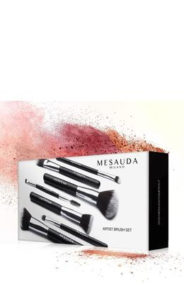 MESAUDA Artist Brush Set