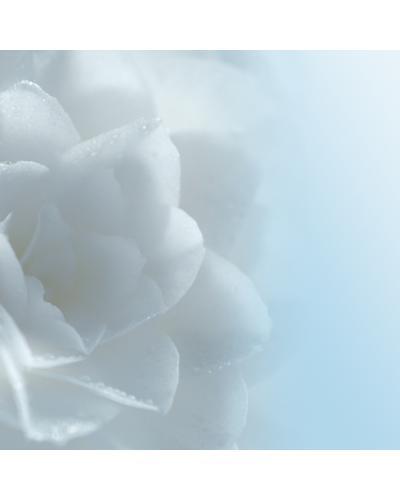 CHANEL Увлажняющий лосьон, придающий сияние Hydra Beauty Lotion Very Moist. Фото 3