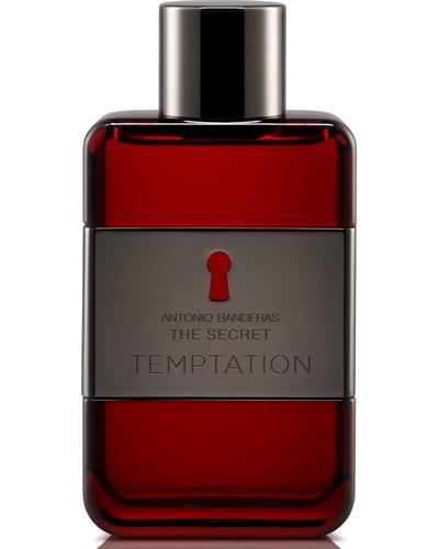 Antonio Banderas The Secret Temptation
