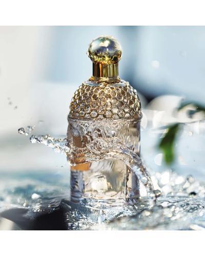 Guerlain Aqua Allegoria Ginger Piccante. Фото 4